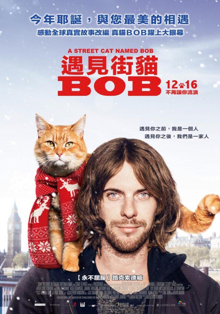 98yp 遇見街貓BOB 線上看