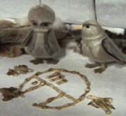 98yp 猫头鹰和乌鸦:爱斯基摩人传说 線上看