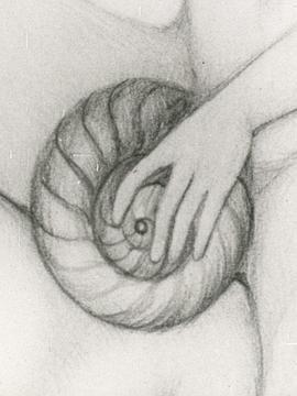 98yp Escargot de Venus 線上看