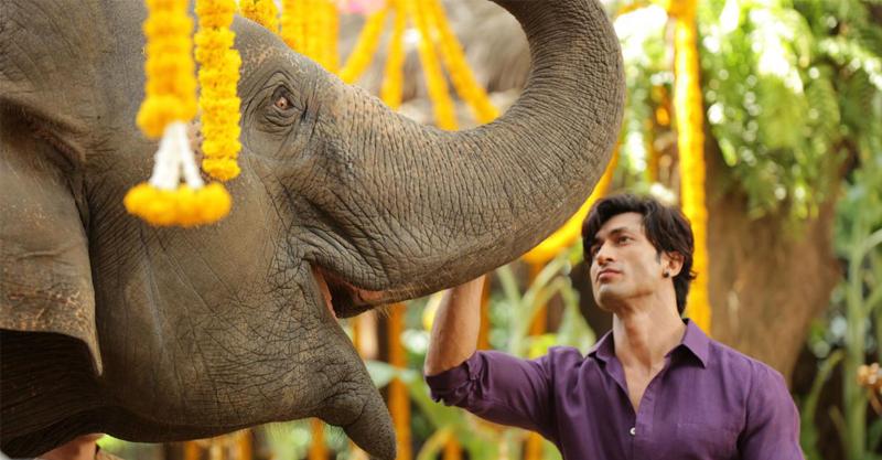 《魔蠍大帝》強導遠征寶萊塢再創電影巔峰 性感獸醫大秀冰塊肌竟被栽贓「偷象牙」