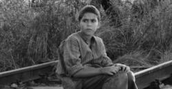 《異端鳥》原著作者竟和性侵名導羅曼波蘭斯基有關 逃離曼森集團追殺卻又自殺的戲劇人生
