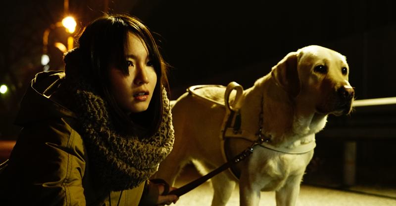 日本懸疑暴力強片《看不見的目擊者》 超萌拉不拉多超搶戲吉岡里帆秒圈粉